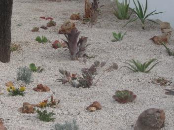 Gravel mulch when first laid