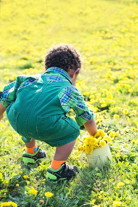 little-boy-in-dandelions-756434_960_720