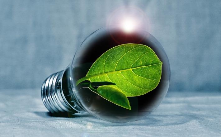 light-bulb-2631864_960_720