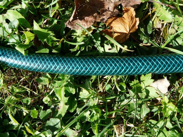 garden-hose-61312_960_720