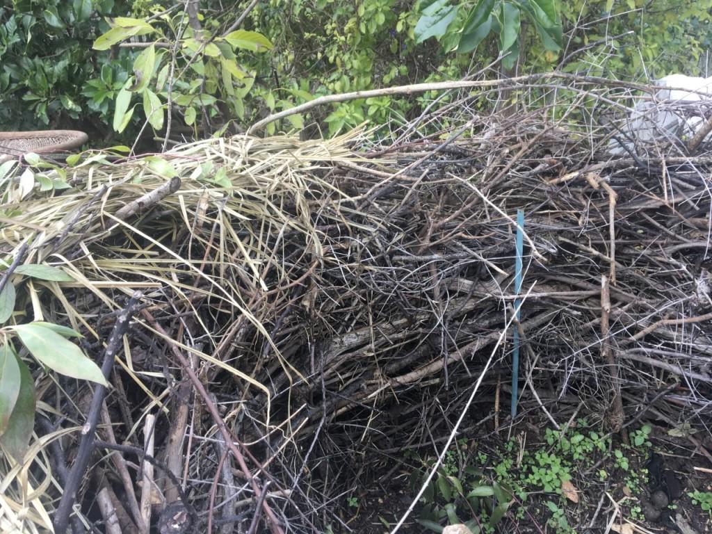 Dry Hedge
